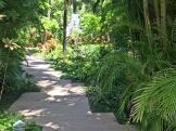 path-photo